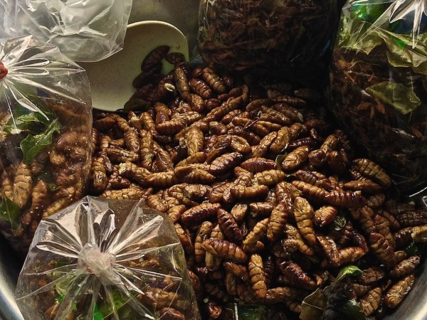 Fried silkworms at the market