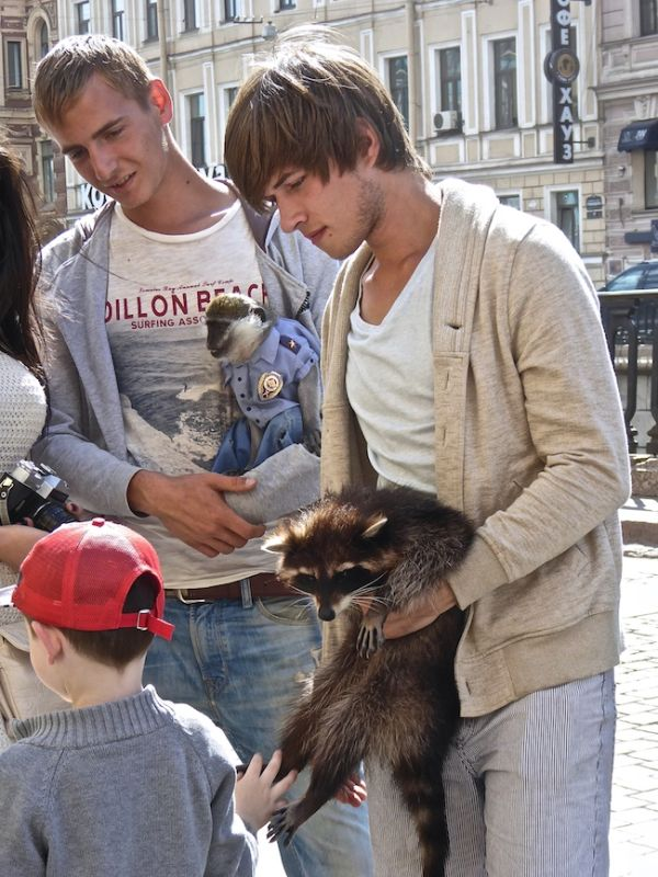 Boys with monkey and racoon