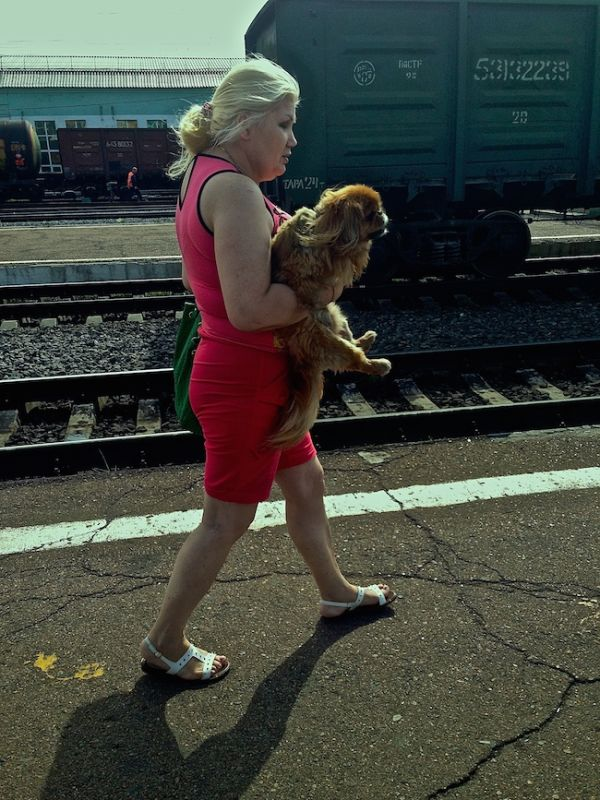 Lady travelling with dog