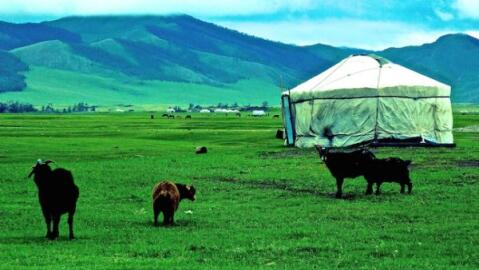 Our tour of Central Mongolia