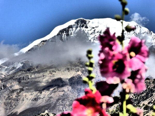 Mont Annapurna IV dans les Himalayas