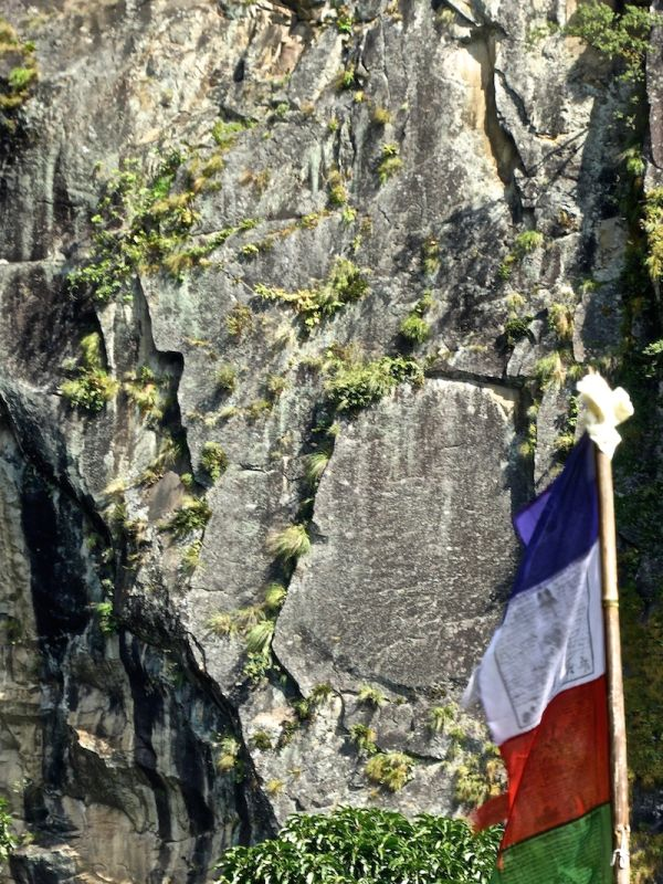 Is it a the French flag or part of the Buddhist flag?