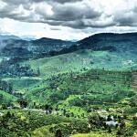 Train from Nuwara Eliya to Ella, a journey through the clouds