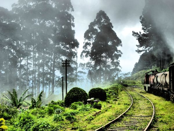 A stunning train journey through the clouds