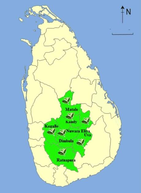 Map of Sri Lank tea country