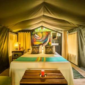 Experience the ultimate glamping experience on a tented safari in Sri Lanka's Udawalawe National Park