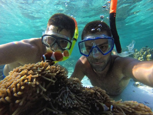 Finding Nemo in the islands