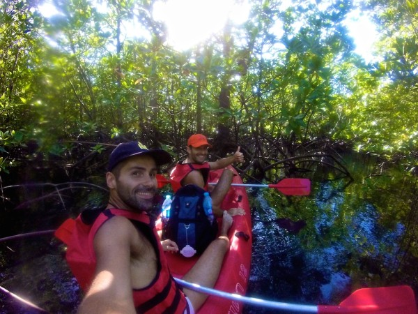 Canoeing through the mangrove forest