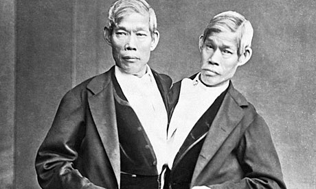 Siamese twins interesting facts about thailand