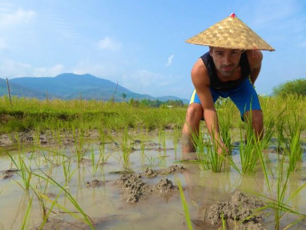 Sebastien planting rice