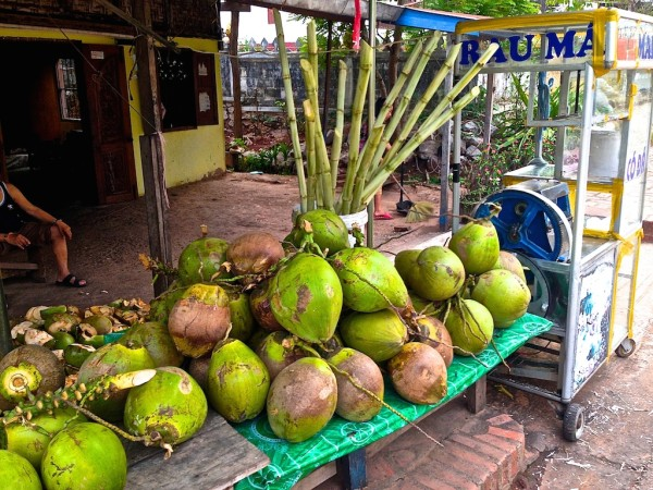 Sugar cane and coconut stand
