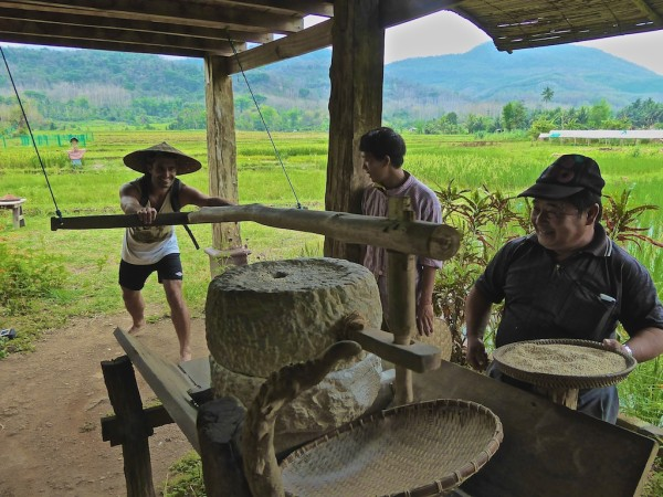 Stefan grinding unused rice particles