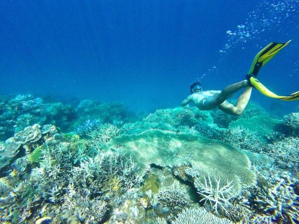 Sebastien snorkelling