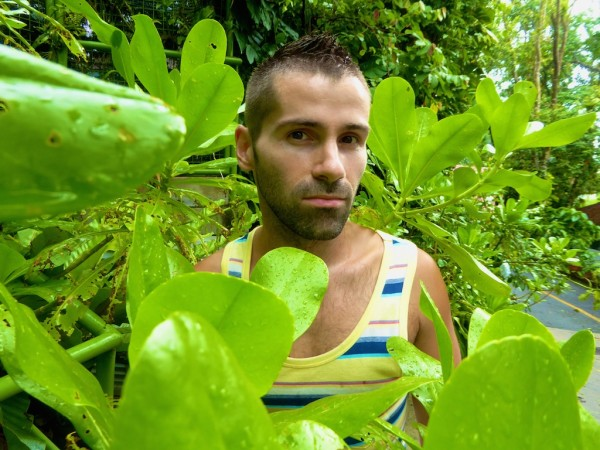 Ambong Ambong plant Sebastiien