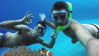Finding Nemo snorkelling in El Nido