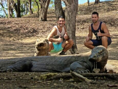 Meeting the Komodo Dragons during our gay friendly luxury liveaboard in Komodo National Park