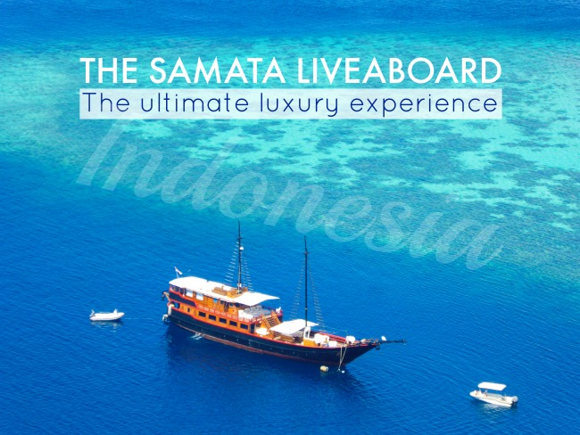 The Samata: gay friendly luxury liveaboard in Indonesia
