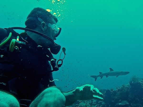 Stefan spotting another shark diving at the Komodo National Park