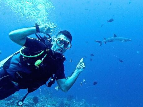 Spotting a reef shark diving at the Komodo National Park