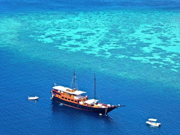 How to find the best liveaboard for scuba diving Samata liveaboard indonesia