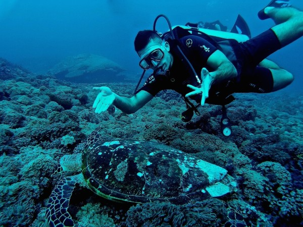 Stefan with turtle diving between Gili T and Gili Meno