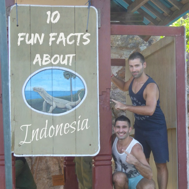 10 fun facts indonesia nomadic boys