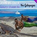 Join us for a luxury gay cruise to the Galapagos this October