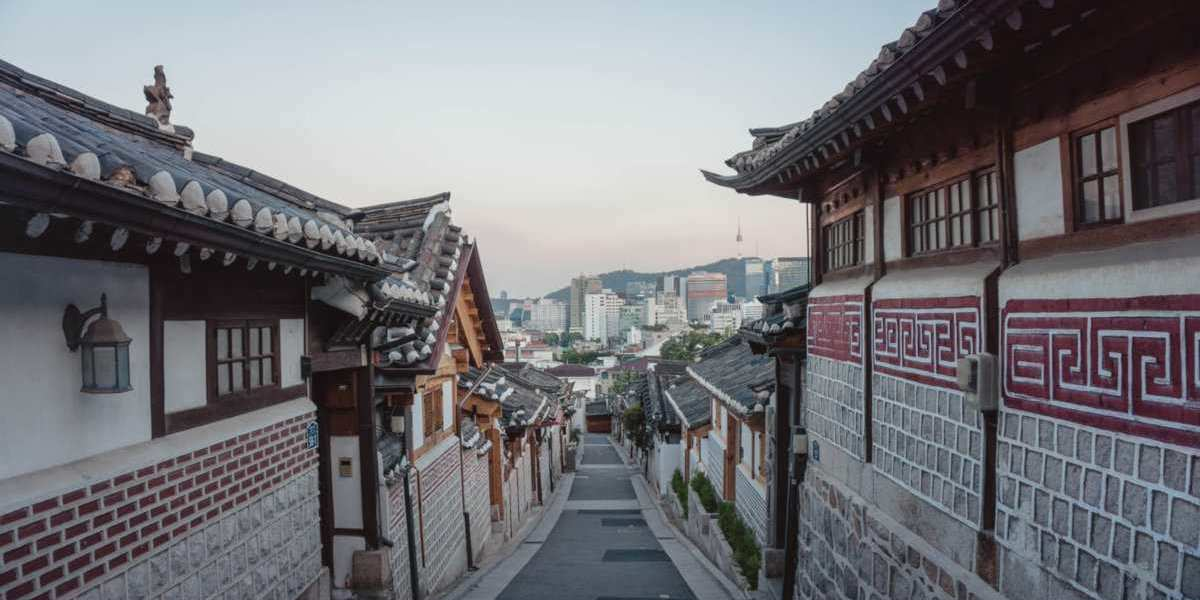 Find out what to do while you're exploring the exciting city of Seoul