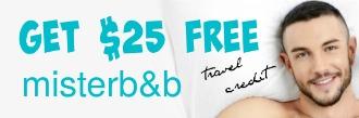 Mister bnb free credit