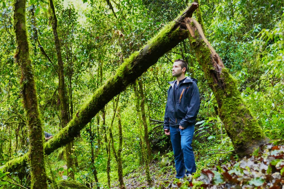 Exploring the Mocona jungle during our road trip in northeast Argentina.
