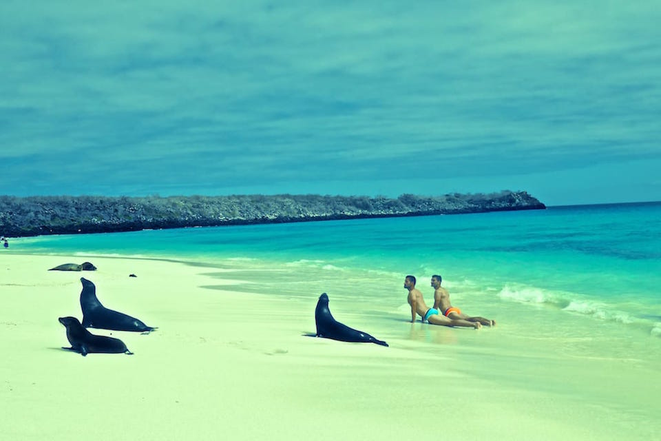 Espanola Island Gardner Bay beach part of East Islands Galapagos itinerary