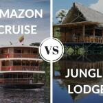 Amazon cruise versus jungle lodge?