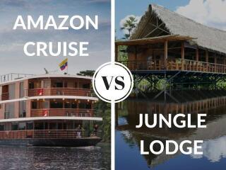 Amazon cruise versus jungle lodge?