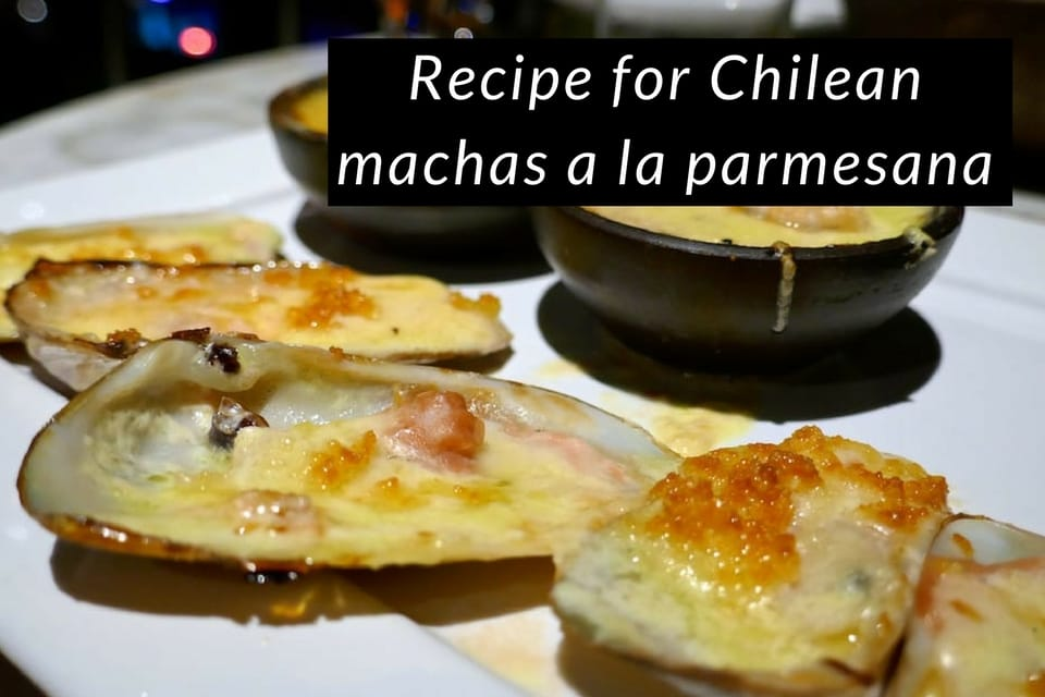 Recipe for Chilean machas a la parmesana