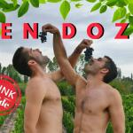 Gay Mendoza: a gay travel guide to the wine capital of Argentina
