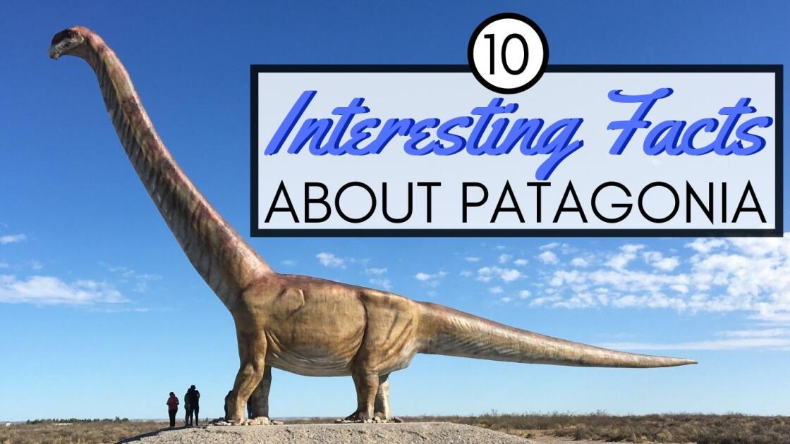 10 interesting facts about Patagonia