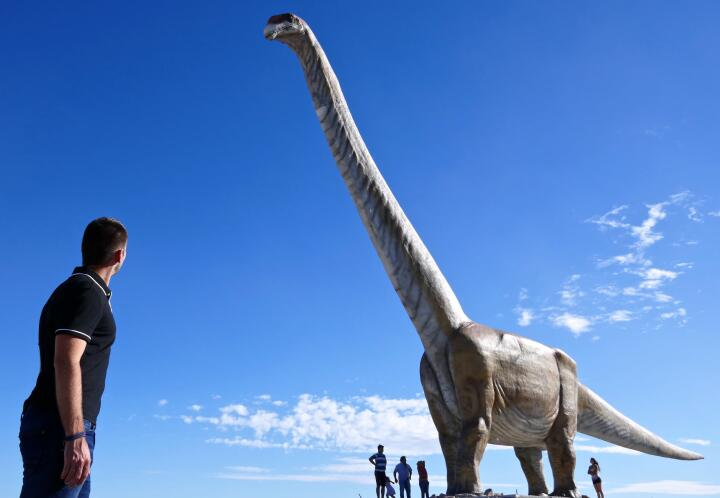 Largest dinosaur in the world one of 10 interesting facts about Patagonia