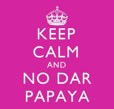 Keep Calm and No Dar Papaya keep valuables out of sight