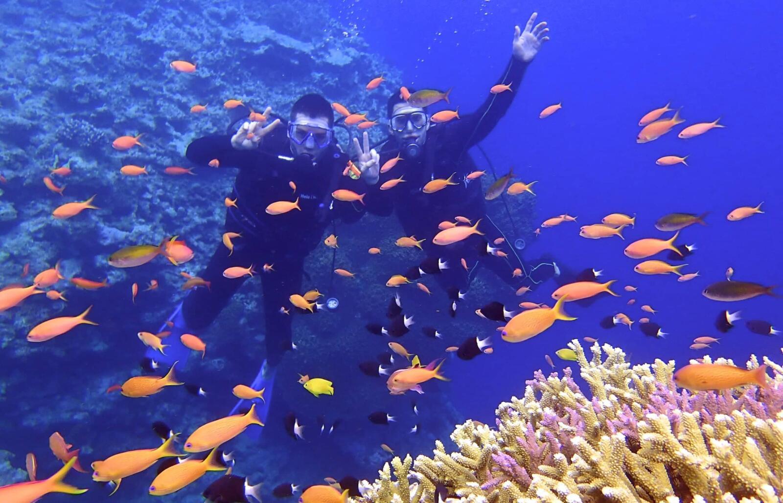 japan trip blog 10 days itinerary Nomadic Boys diving