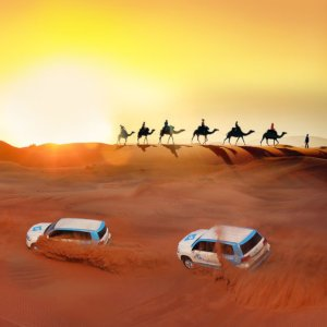 Dune-bashing and camel rides in the desert are a must-do when visiting Dubai.