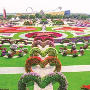 See the incredible floral displays at Dubai Miracle Garden