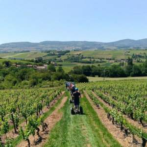 From Lyon you can visit the Beaujolais wineries, but why not do it on segway? This is a fun day-trip from the city.