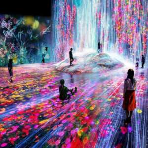 A must-see while in Tokyo is the incredible digital art museum of teamLab