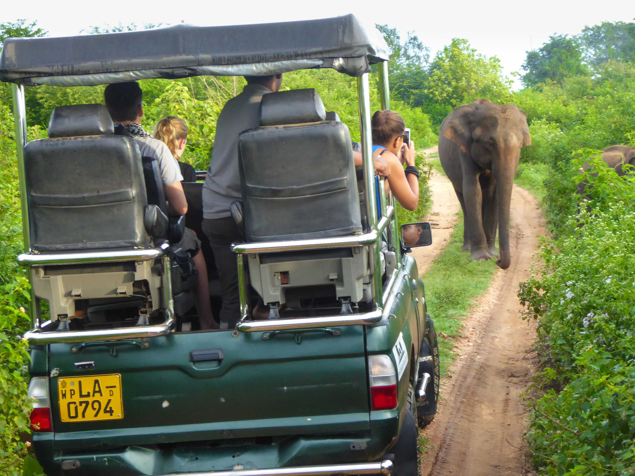 The best safari in the world is in Sri Lanka