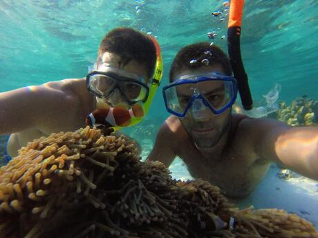 Snorkelling with clown fish on Koh Adang