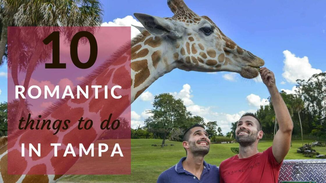 10 romantic and cool things to do for couples in Tampa