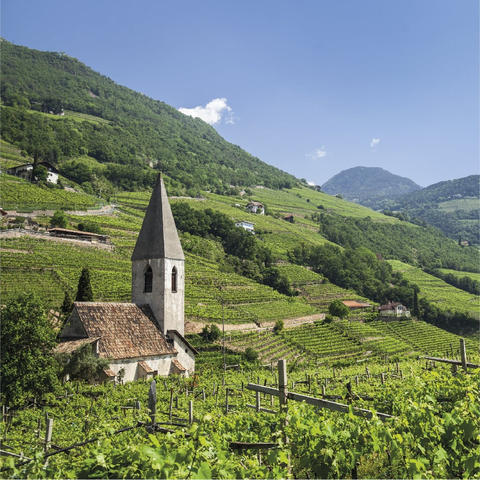 View of Bolzano and South Tyrol