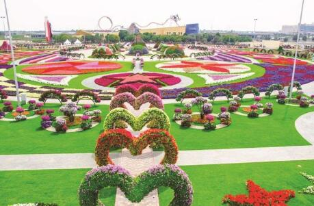 Gay Dubai - Explore the stunning designs at the Dubai Miracle Garden.