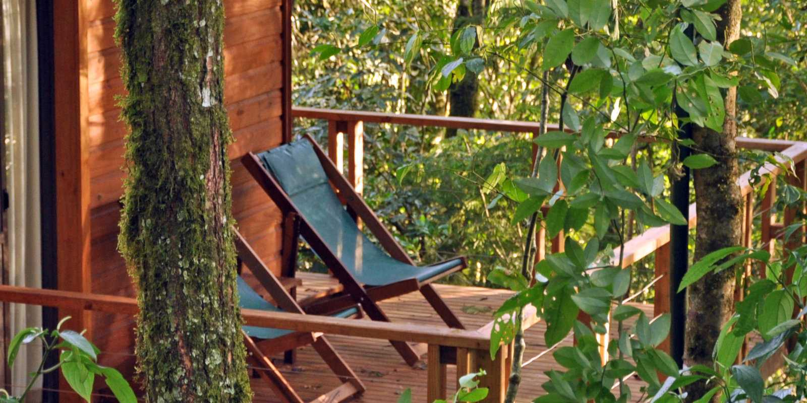 Road-tripping in Argentina - sleep in a romantic treehouse bungalow at the Don Mocona Virgin Lodge.