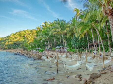 Relax in the hammocks at the secluded Las Caletas beach near Puerto Vallarta.